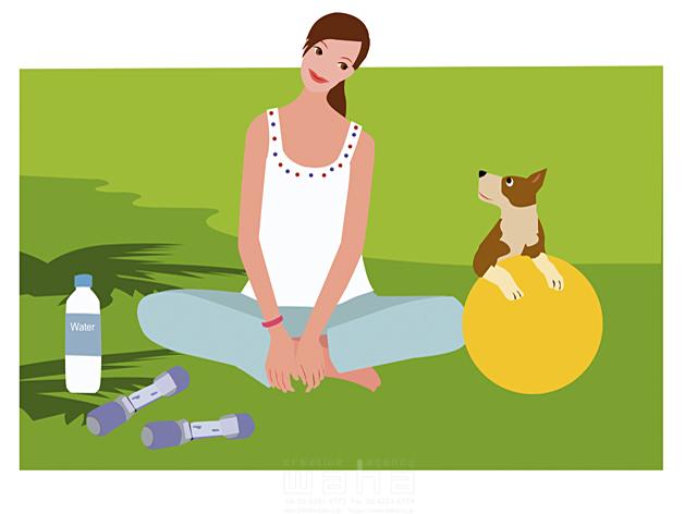 イラスト&写真のストックフォトwaha(ワーハ) 女性、ヘルシー、ビューティ、ペット、外出、芝生、草原、広場、野原、開放感、リラックス、あぐらをかく、フィットネス、エクササイズ、運動、健康器具、トレーニング用品、ダンベル、ボール、鍛える、シェイプアップ 海野 富子 15-0377c