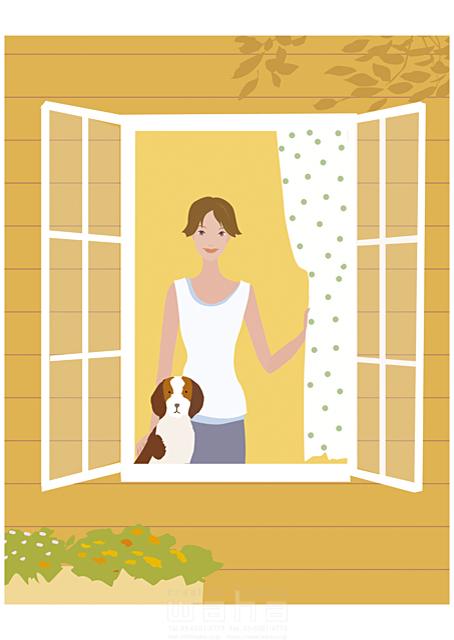 イラスト&写真のストックフォトwaha(ワーハ) 人物、女性、室内、窓、ペット、犬、カーテン、夏、植物 海野 富子 17-0152c