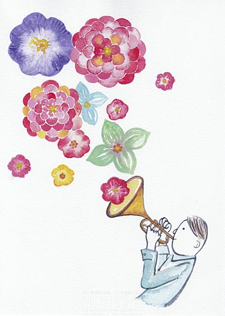 イラスト&写真のストックフォトwaha(ワーハ) 水彩、人、人物、大人、若者、男性、トランペット、楽器、音楽、花、植物、イメージ、咲く、春、演奏 ささき みえこ 19-1875b