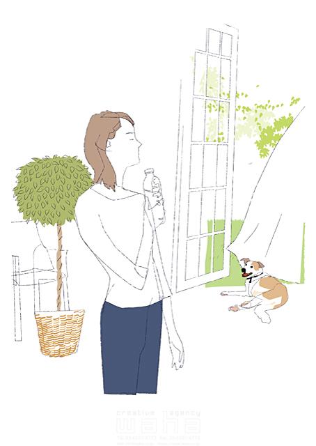 イラスト&写真のストックフォトwaha(ワーハ) シティライフ、シンプル、植物、ペット、犬、休日、午後、生活 都筑 みなみ 19-1927b