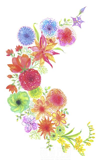 イラスト&写真のストックフォトwaha(ワーハ) 水彩、花、植物、草、緑、咲く、春、エコロジー、自然、芽、カラフル、成長 中野 和美 19-1953b