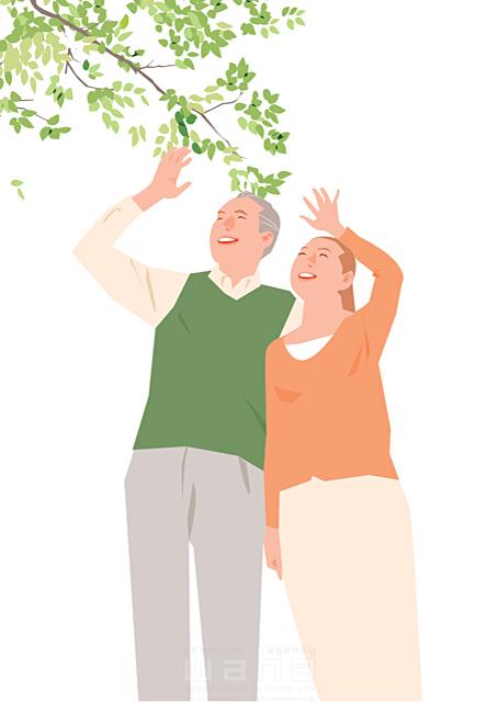 イラスト&写真のストックフォトwaha(ワーハ) 人、人物、大人、女性、男性、家族、夫婦、中高年、シニア、散歩、屋外、見上げる、安らぎ、憩い、生活、暮らし 都筑 みなみ 19-2258b
