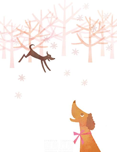 イラスト&写真のストックフォトwaha(ワーハ) 犬、動物、生き物、木、森、自然、雪、冬、愛情、可愛い、ファンタジー、やわらかい、生活、暮らし、日常 前田 まみ 19-2581b