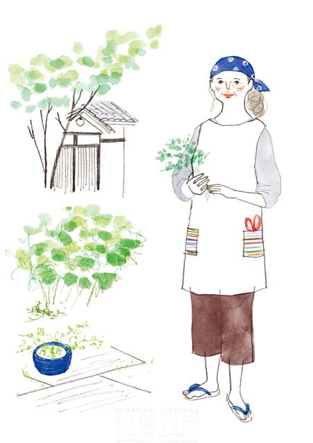 イラスト&写真のストックフォトwaha(ワーハ) 水彩、人、女性、大人、主婦、お母さん、シニア、お年寄り、中高年、家、住宅、庭、ガーデニング、ガーデンライフ、植物、憩い、安らぎ、生活、暮らし、日常、オシャレ、屋外 わたなべ さちこ 19-2586b