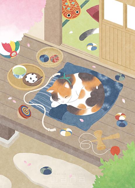 イラスト&写真のストックフォトwaha(ワーハ) 動物、生き物、猫、ひなたぼっこ、春、花、桜、家、住宅、庭、縁側、リラックス、休む、憩い、安らぎ、眠る、遊び、平和、穏やか、昔 高村 かい 19-2622b